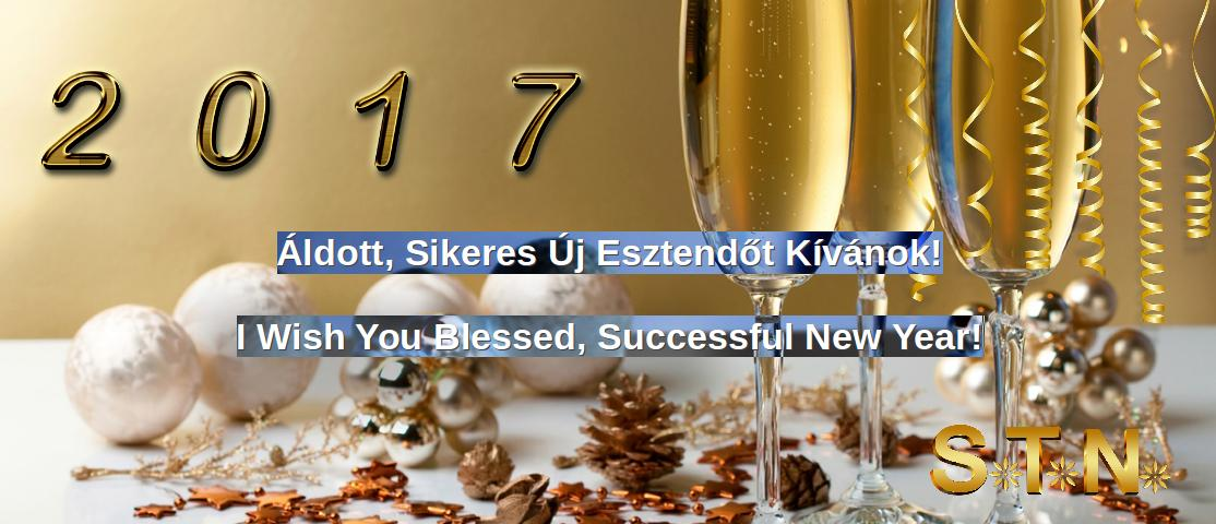 I Wish You Blessed, Successful New Year!